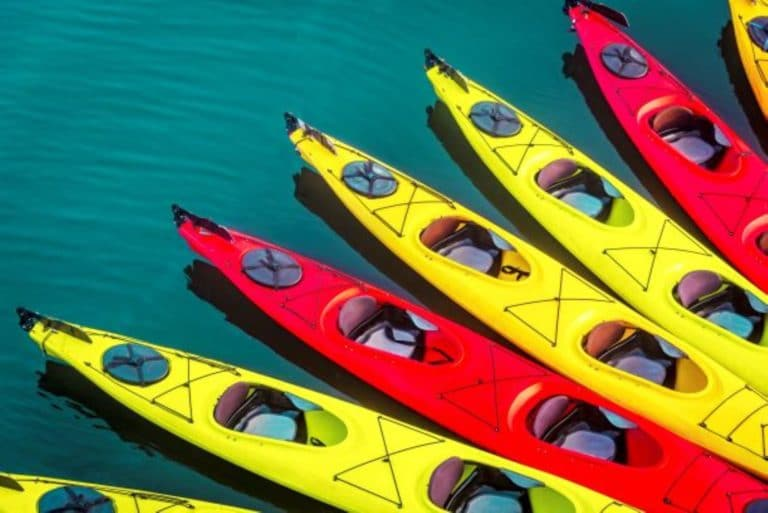 different kayaks in water